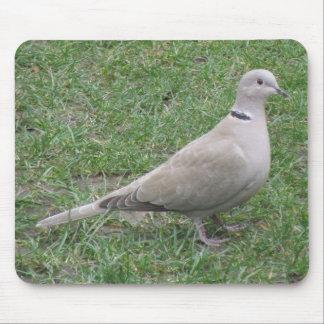 Collared Dove Mousepad
