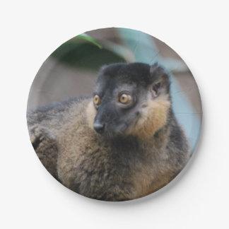 Collared Lemur 7 Inch Paper Plate