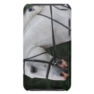 Collected White Horse iTouch Case Barely There iPod Covers