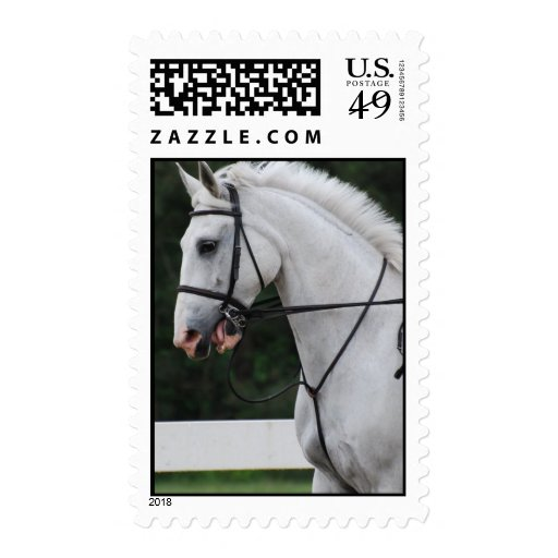 Collected White Horse Postage Stamp