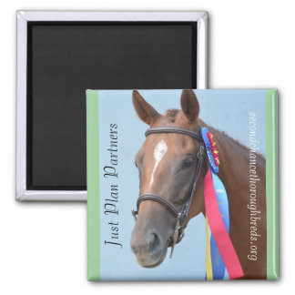 Collectible Magnet Series - Just Plan Partners