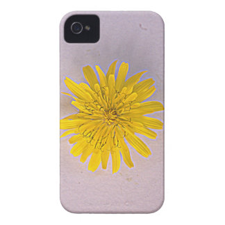 Collection daisies by Babylandia Case-Mate iPhone 4 Case