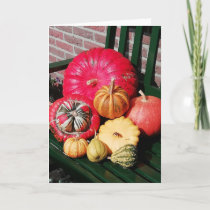 Collection of different kinds of pumpkins. card