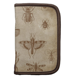Collection of Insects - vintage Expedition Planners