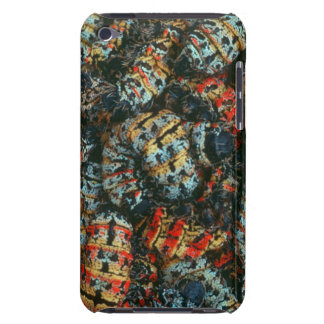 Collection Of Mopane Worms (Imbrassia Belina) Barely There iPod Case