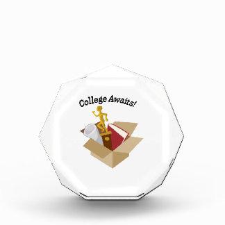 College Awaits Award