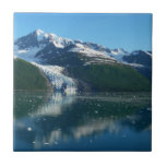 College Fjord II Beautiful Alaska Photography Tile