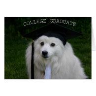 College Gradulate Greeting Cards