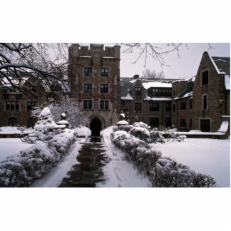 College of New Rochelle, New Rochelle, New York, U Photo Cut Out