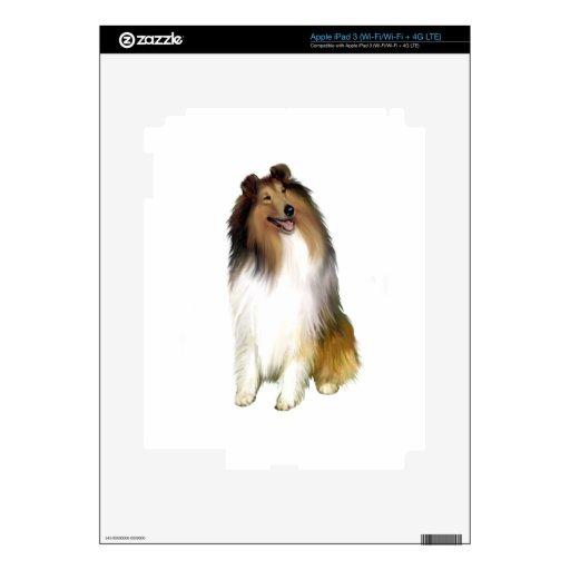 Collie (a) - Sable y blanco iPad 3 Skin