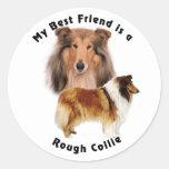 Collie áspero del mejor amigo etiquetas redondas