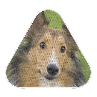 Collie áspero, perro, animal altavoz bluetooth