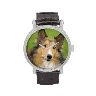 Collie áspero, perro, animal relojes de mano