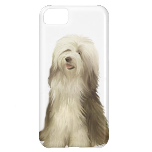 Collie barbudo (b) funda para iPhone 5C