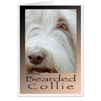 Collie barbudo tarjeta de felicitación