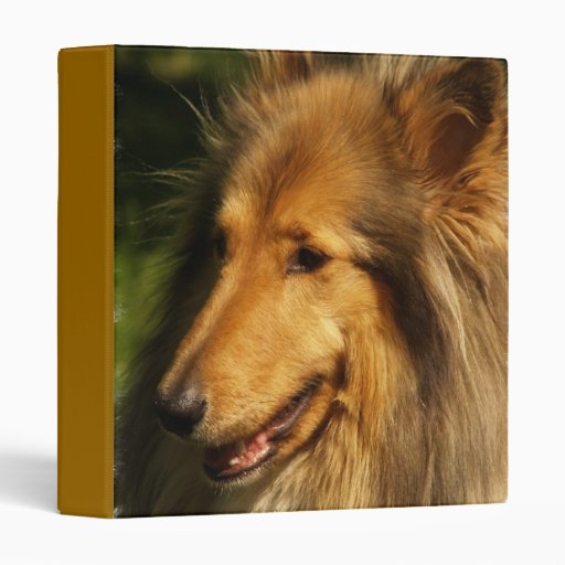 Collie Binder