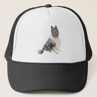 Collie - blue merle trucker hat