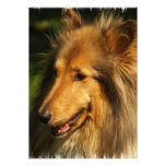 Collie Breed Invitation