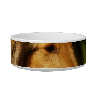 Collie Breed Pet Bowl