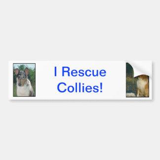Collie Bumper Sticker