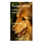 Collie Business Card