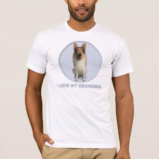 Collie (capa áspera) Granddog Playera