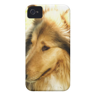 Collie Case-Mate iPhone 4 Protector