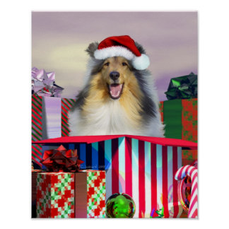 Collie Christmas Surpise Poster