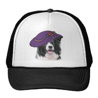 Collie Ditzy de Dogs~Original Hat~Border Gorro De Camionero