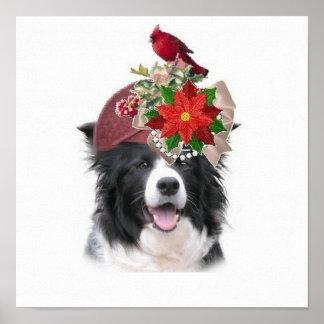 Collie Ditzy de Dogs~Original Poster~Border Póster