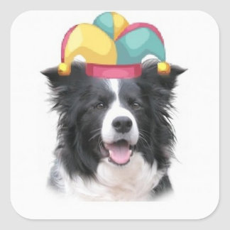 Collie Ditzy de Dogs~Original Sticker~Border Pegatina Cuadrada