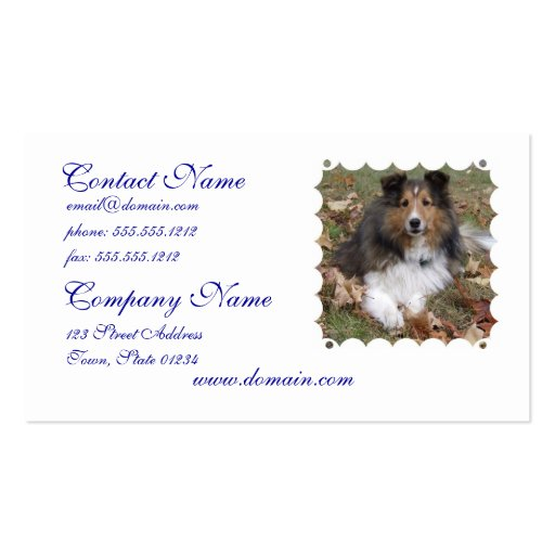 Collie Dog Business Cards