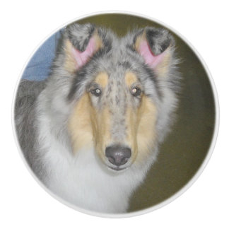 Collie Dog Ceramic Knob