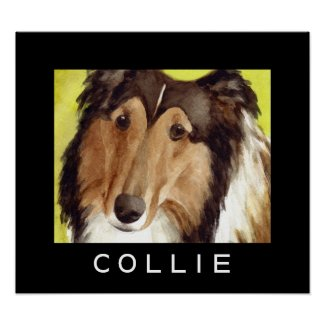 Collie Dog Posters