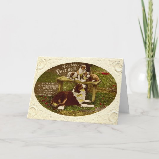 Collie Dog Pups Happy Birthday Vintage 1910 Card Zazzle