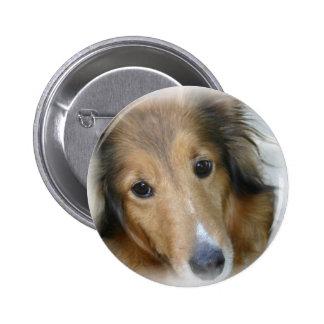 Collie Dog Round Button