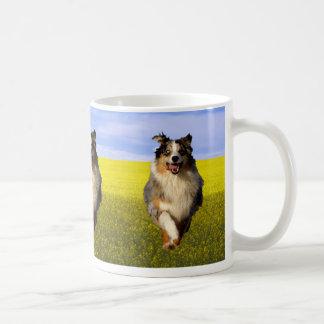 Collie dog running coffee mug