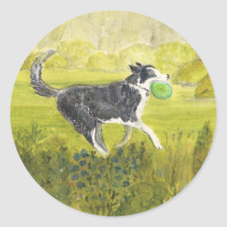 Collie Dog with Frizby Round Stickers