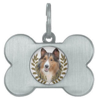 Collie Framed in Wheat Pet Name Tag