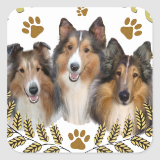 Collie Framed in Wheat Square Sticker