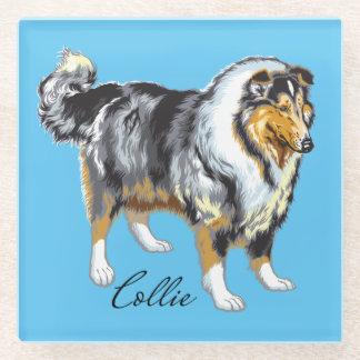 collie glass coaster
