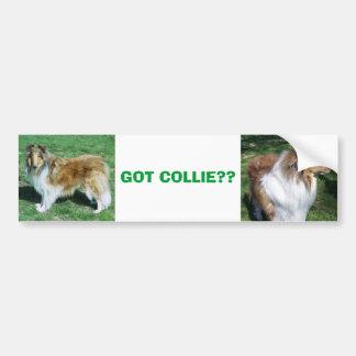COLLIE, GOT COLLIE?? CAR BUMPER STICKER