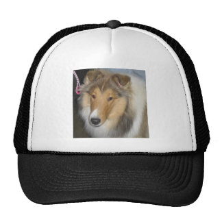 Collie Hat