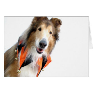 Collie in Jester Collar Cards