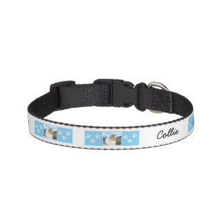 Collie in Mountains (Rough) Painting - Dog Art Pet Collar