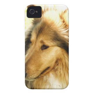Collie iPhone 4 Case