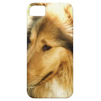 Collie iPhone 5 Carcasas