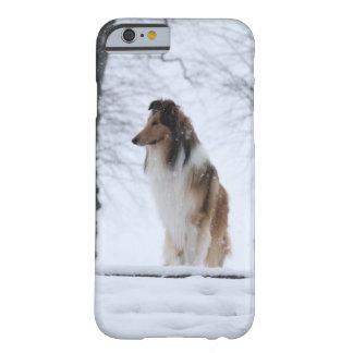 Collie iPhone 6/6s Case