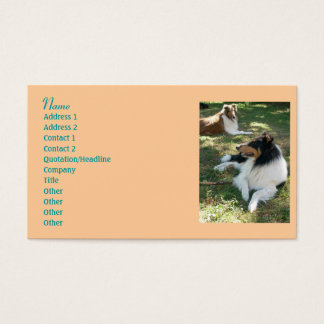 Collie Lovers Business Cards 2