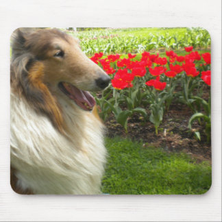 Collie n the Tulips Mouse Pad